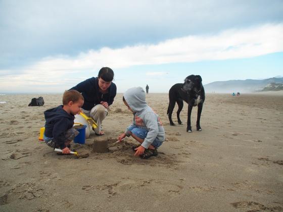 Jack & Olly at the Beach
